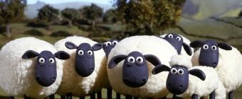 Startup Pitch: Sheeple